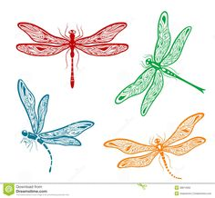 Dragonfly vector   Set of four different pretty dainty dragonfly designs with delicate ...