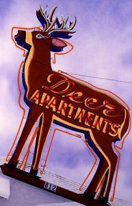 Deer Apartments Neon Sign