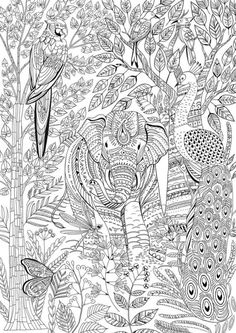 Animal Coloring Pages Nature Elephant Page Free Books Printable Colour