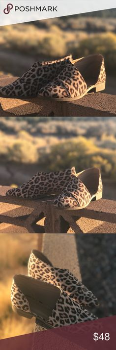 << Leopard Print Cut out Shoes Booties Cutout >> 👌🏻👌🏻👌🏻 Woo child. These. Shoes! I'm in love! These babies are stylish and so so comfy. Leopard print in a hot cutout bootie style! Animal print is the hottest trend this fall! Fit a bit on the snug size. I'm a true 10, sometimes a 10.5 or 111 at Charlotte Russe, and the 10 was too snug for me. I can't fit in, but they are too tight.  I would recommend considering going a half-size up in size Shoes