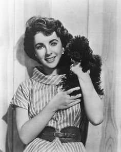 Elizabeth Taylor did have a black poodle. Adorable!!