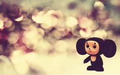 cute desktop cartoon tweety background messi photo other