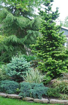 Archived Garden Articles with Susan Wheeler, local garden expert and designer.