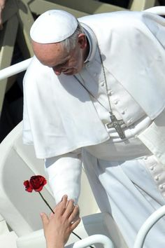 Pope Francis and a flower
