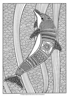 Free Dolphin Colouring Page For Grown Ups