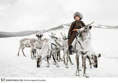 #Photographs of vanishing #tribes before they pass away by Jimmy Nelson: Tsaatan, Mongolia