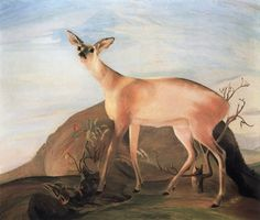 Deer by Tivadar Csontvary Kosztka Deer Art, Moose Art, Landscape Art, Landscape Paintings, Oil Painting Gallery, Post Impressionism, Art Database, Oil Painting Reproductions, Animal Paintings