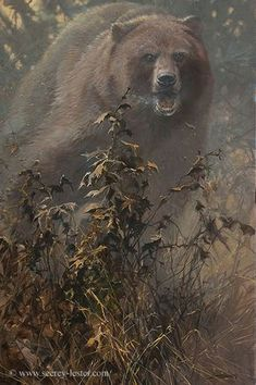 """""""Brush with Death"""" Art of John & Suzie Seerey-Lester Bear Paintings, Wildlife Paintings, Cool Paintings, Wildlife Art, Hunting Painting, Hunting Art, Nature Hunt, Wild Nature, Bear Pictures"""
