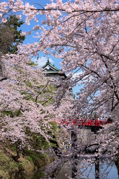 hirosaki japan by Mocha Matari on 500px