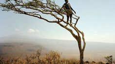 View from Above_ A member of the Hadza, a group of hunter-gatherers, can spot game from his porch on a wind-blown tree in Tanzania. Photograph by Martin Schoeller, National Geographic. Martin Schoeller, We Are The World, People Of The World, Kenya, Hunter Gatherer, African Tribes, African Safari, National Geographic Photos, Dreams