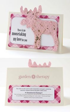 """""""There is no Moosetaking my love for you"""" awww! How to Make Seed Paper Valentines"""
