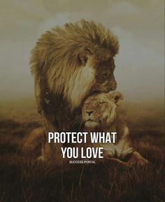 Relationship Goals leo and leo relationship Leo Relationship, Relationships, Relationship Tattoos, Lioness Quotes, Animals Beautiful, Cute Animals, Lion Couple, Lion Family, Lion Love