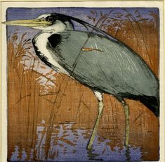 Allen William Seaby woodcut I believe this is a Heron. I love the way its bill goes out of the frame onto the border. Such a beautiful piece!