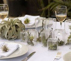 great table set up using air plants