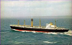 M.S. Haasterdijk 1960 Holland America Line, Concept Ships, Rotterdam, Paddle, Sailing Ships, Hal Cruises, Vehicles, Container, Steam Boats