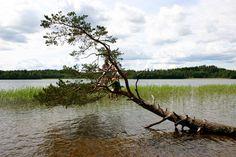 Lake Ören, Småland, Sweden