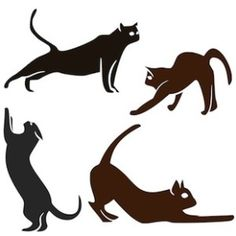"""These cats are showing us some of the """"secret moves"""" of a pandiculation which we human animals can use to remain comfortable and pain free."""