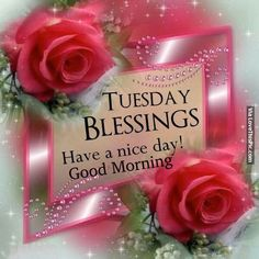 Tuesday Blessings, Good Morning