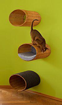 RONDO WALL  With RONDO WALL we developed a supreme climbing and living habitat for Frau Schmitt our female cat with whom you are already familiar. http://www.pet-interiors.de/de/rondo-wall-korb-kratzbaum-zur-wandmontage_artnr222803