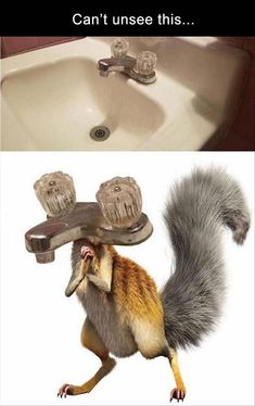 daily-afternoon-ridiculous-funny-picdump-49-of-the-day-19