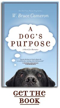 Being reincarnated over and over again, this dog must discover what his true purpose is in life. A fantastic book filled with humor, sorrow, pain, and joy. You explore the world from a dog's perspective on life.