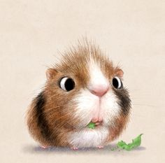 Cute illustrations - Wheeeeek wheek wheek