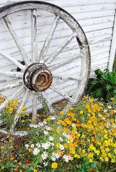 Lovely old wagon wheel garden feature