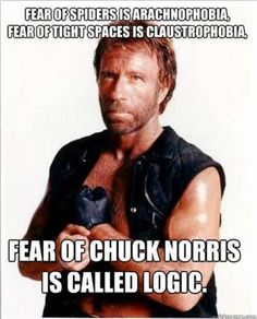 If someone tells a Chuck Norris joke in the woods and he's not around to hear it, will that person still die at the hands of Chuck? Yes. Chuck Norris hears everything.Chuck Norris pictures, facts, and memes have become so common, it's hard to remember a time when the world didn't quake in fea...
