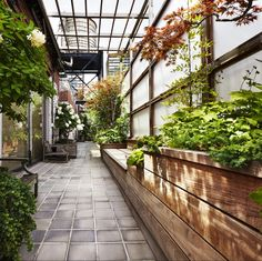 How to make best use of a narrow, rooftop container gardening space, with raised beds and eye catching detail