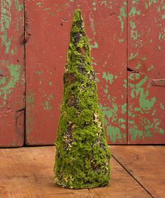 Moss Tree Cone Topiary | zulily