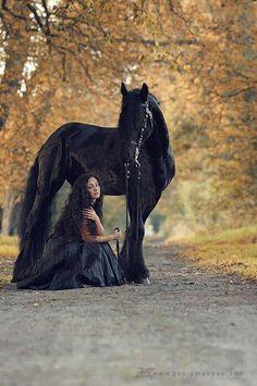 Horses... They embody Ttue Romance