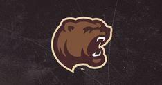 Bears Announce Hall of Fame Class of 2019 American Hockey League, Hershey Bears, Class Of 2019, Seasons, History, Historia, Seasons Of The Year
