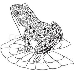 zentangle frog coloring page ms - Frog Coloring Sheet
