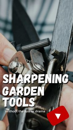 Living In A Shed, Blue Geranium, Garden Tools, Garden Ideas, Pruning Shears, Dementia, Super Simple, Sheds, Drama