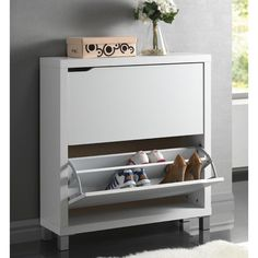Modern Shoe Storage Cabinet – First of a Kind