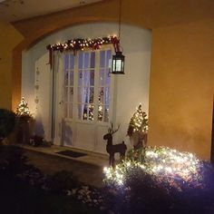 My Outdoor Christmas decorations