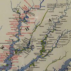 African American Genealogy, American History, Powhatan County, Virginia History, Dna Genealogy, Dna Test, History Books, Genetics, Diversity