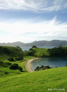 Bay of Islands, North Island of New Zealand