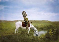 Le chef indien Red Hawk des Oglala Sioux à cheval, en 1905