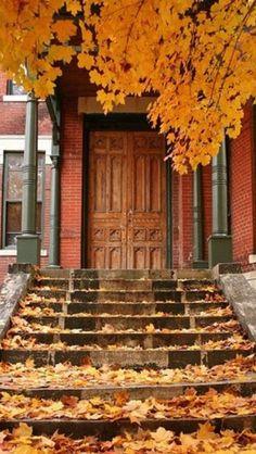 !!!!doors