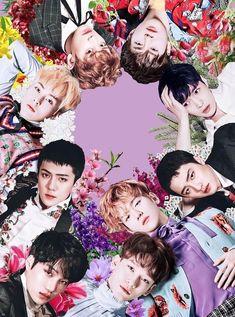 #EXO #Baekhuyn #Chanyeol #Sehun #D.O #Chen #KAI #Suho #Lay #Xiumin