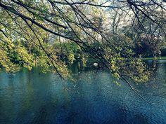 St Stephen's Green #Dublin #Ireland