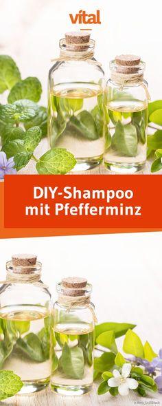 Pfefferminz-Shampoo selber machen: Ihr kennt Pfefferminz bisher nur im Tee? Im Shampoo hilft es auch bei gereizter Kopfhaut und fettigen Haaren und eignet sich besonders für dunkle Haare!