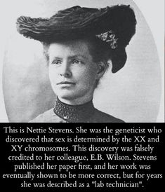Nettie Stevens, the geneticist who discovered XX and XY. Nettie Stevens, the geneticist who discovered XX and XY. Great Women, Amazing Women, Super Women, Amazing People, Weird Facts, Fun Facts, Angst Quotes, Badass Women, Fierce Women