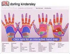 ... and hand charts free foot reflexology widget free hand reflexology