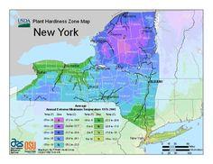 USDA New York Plant Hardiness Zone Map