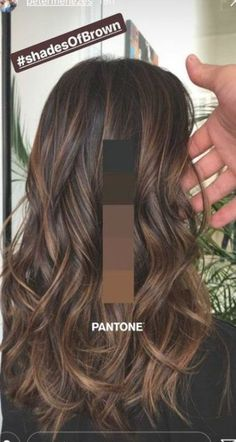 Brown Hair Balayage, Hair Color Balayage, Brown Blonde Hair, Gray Hair, Bayalage, Brown Balyage, Brown Hair With Lowlights, Brown Hair With Caramel Highlights Dark, Brunette Hair Colors