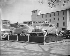 1939 Fords On Dealership Lot. 8x10 photo print. $12.95.