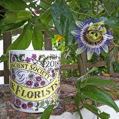 Hippystitch: Miniature Magic Gardens More at Bloom! York - Part 3 Yorkshire Tea, Vase Arrangements, Forest School, San Pellegrino, Anniversary, Miniatures, Bloom, Gardens, Magic