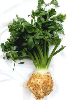 celeriac - useful for both the leaves and the root for a delicious celery flavour Starchy Vegetables, Root Vegetables, Veggies, Celery Plant, Whole Food Recipes, Healthy Recipes, Medicinal Plants, Meatless Monday, Natural Healing